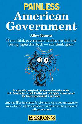 Painless American Government By Strausser, Jeffrey/ Gilgannon, Denise (ILT)